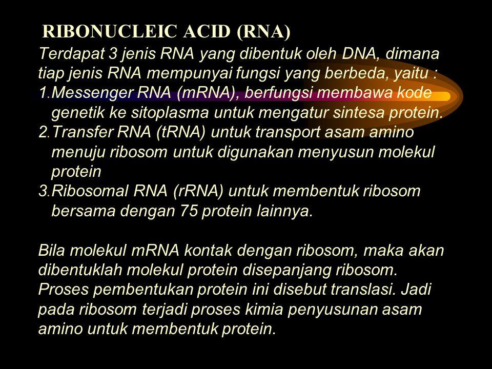 RIBONUCLEIC ACID (RNA)
