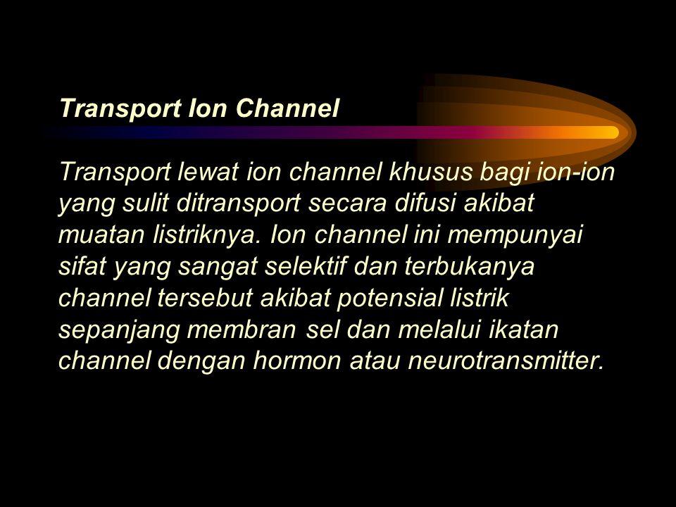 Transport Ion Channel Transport lewat ion channel khusus bagi ion-ion yang sulit ditransport secara difusi akibat muatan listriknya.