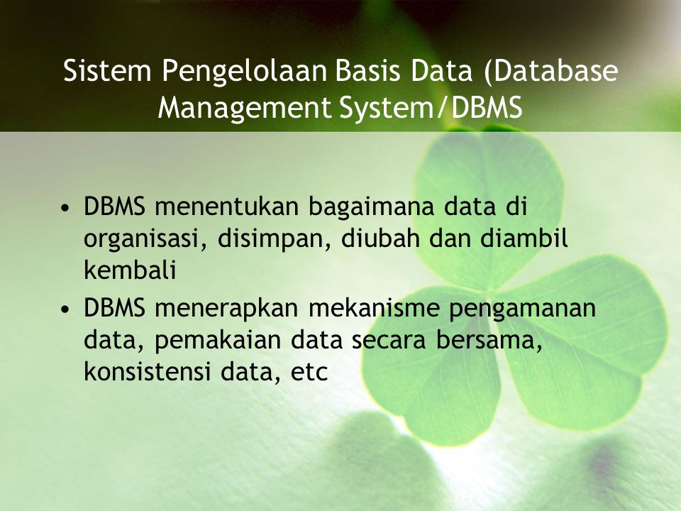 Sistem Pengelolaan Basis Data (Database Management System/DBMS