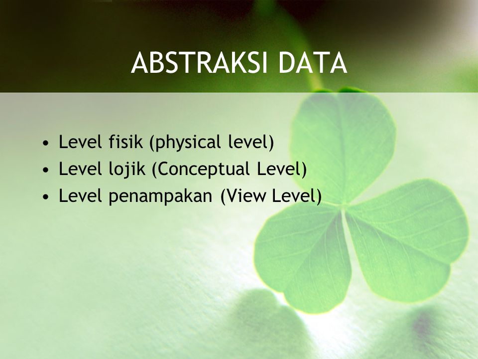 ABSTRAKSI DATA Level fisik (physical level)