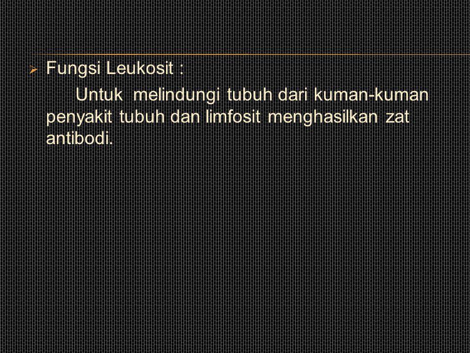 Fungsi Leukosit : Untuk melindungi tubuh dari kuman-kuman penyakit tubuh dan limfosit menghasilkan zat antibodi.