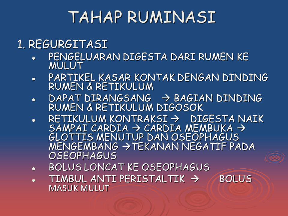 TAHAP RUMINASI 1. REGURGITASI PENGELUARAN DIGESTA DARI RUMEN KE MULUT