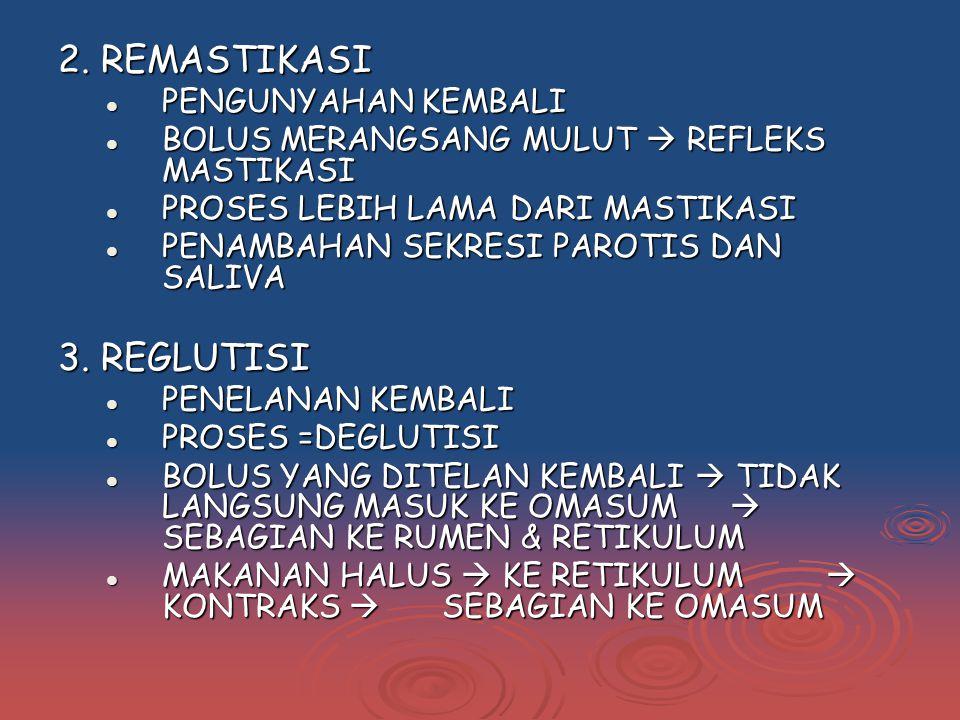 2. REMASTIKASI 3. REGLUTISI PENGUNYAHAN KEMBALI