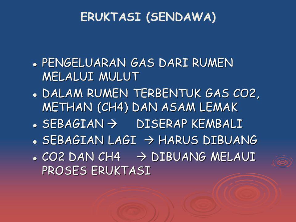 ERUKTASI (SENDAWA) PENGELUARAN GAS DARI RUMEN MELALUI MULUT. DALAM RUMEN TERBENTUK GAS CO2, METHAN (CH4) DAN ASAM LEMAK.