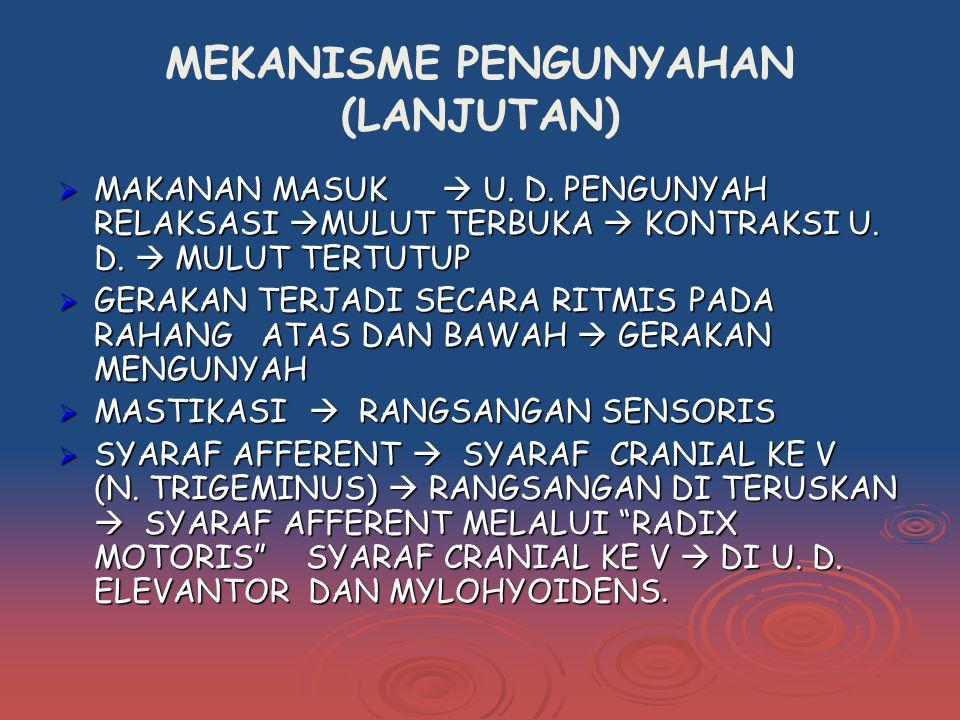 MEKANISME PENGUNYAHAN (LANJUTAN)