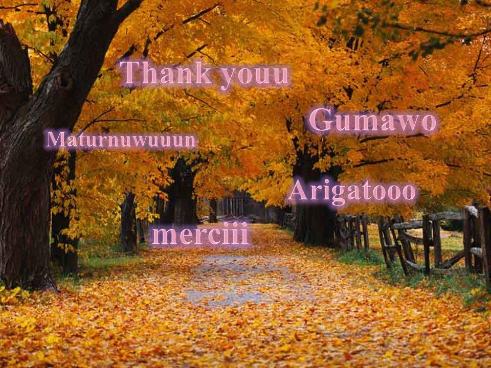 Thank youu Gumawo Maturnuwuuun Arigatooo merciii