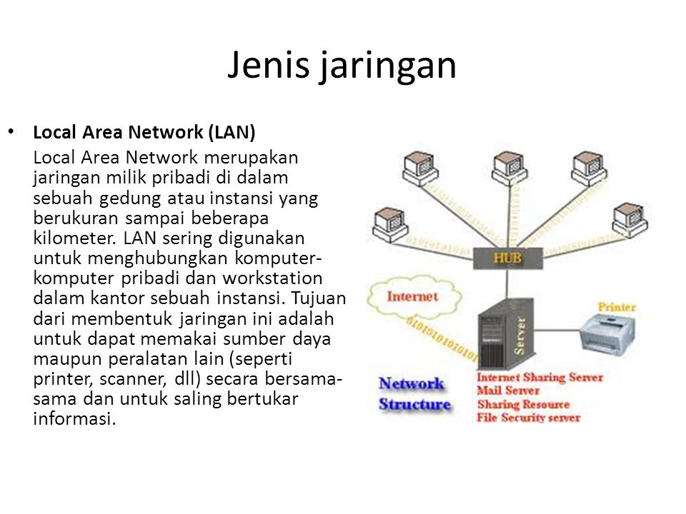 Jenis jaringan Local Area Network (LAN)