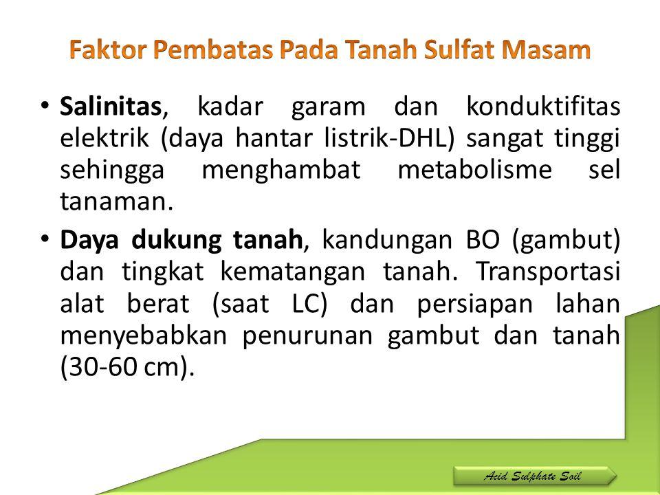 Faktor Pembatas Pada Tanah Sulfat Masam