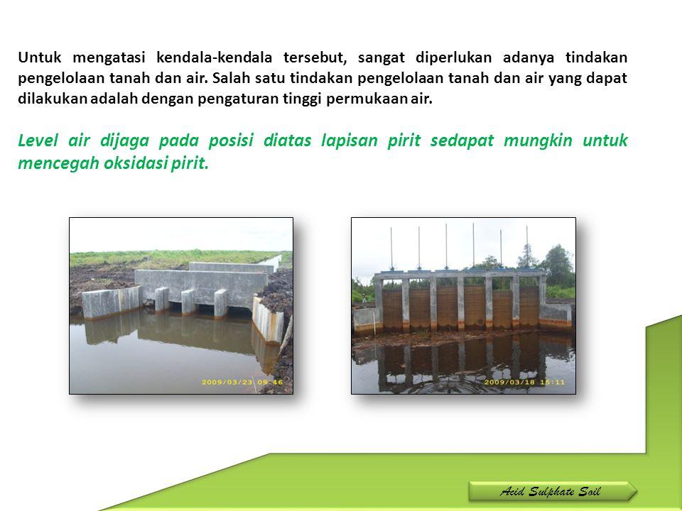 Untuk mengatasi kendala-kendala tersebut, sangat diperlukan adanya tindakan pengelolaan tanah dan air. Salah satu tindakan pengelolaan tanah dan air yang dapat dilakukan adalah dengan pengaturan tinggi permukaan air.