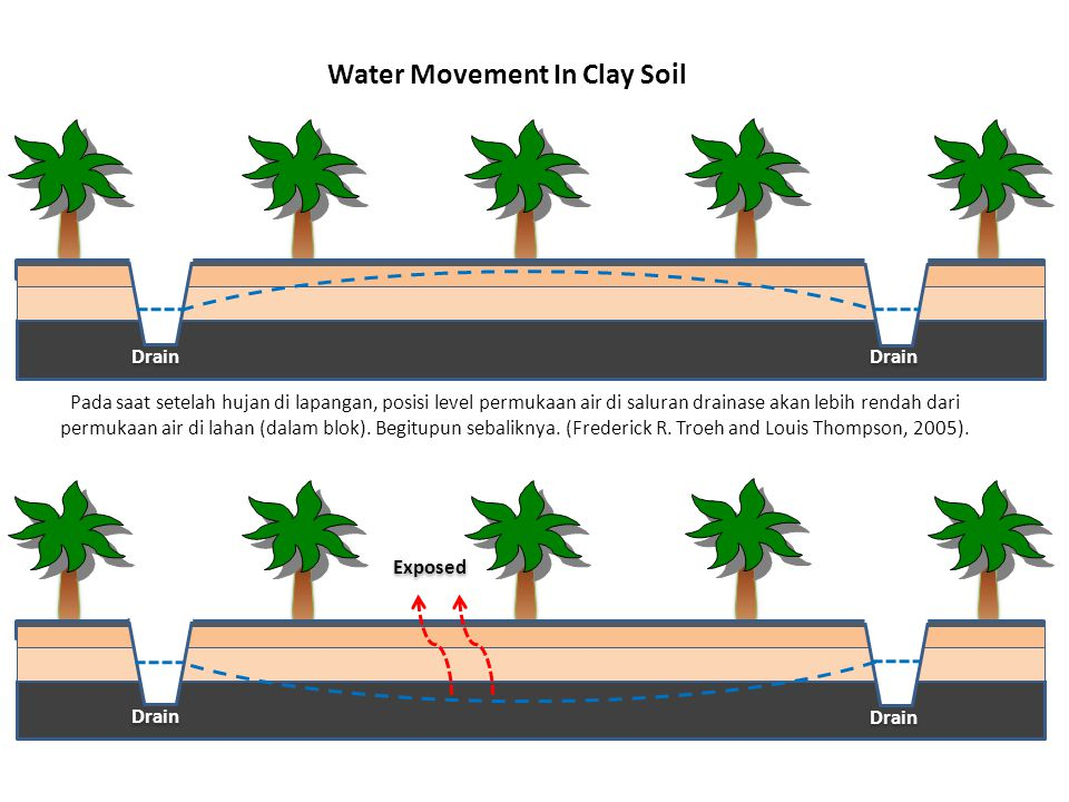 Water Movement In Clay Soil