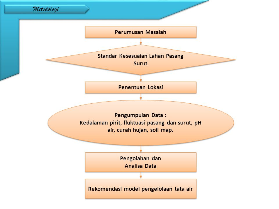 Metodologi Perumusan Masalah Standar Kesesuaian Lahan Pasang Surut