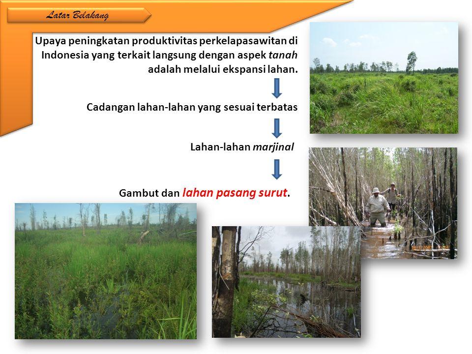 Latar Belakang Upaya peningkatan produktivitas perkelapasawitan di Indonesia yang terkait langsung dengan aspek tanah adalah melalui ekspansi lahan.