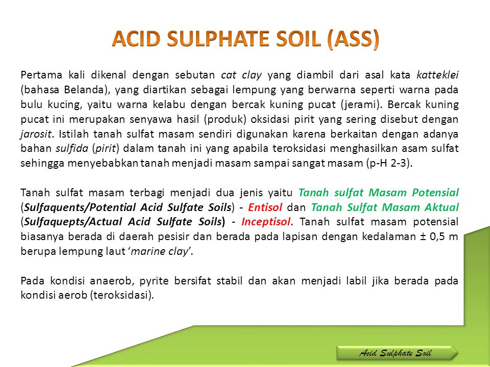 ACID SULPHATE SOIL (ASS)