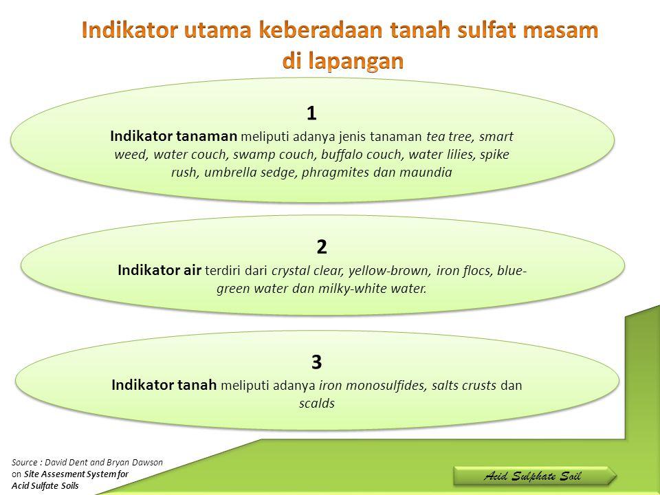 Indikator utama keberadaan tanah sulfat masam
