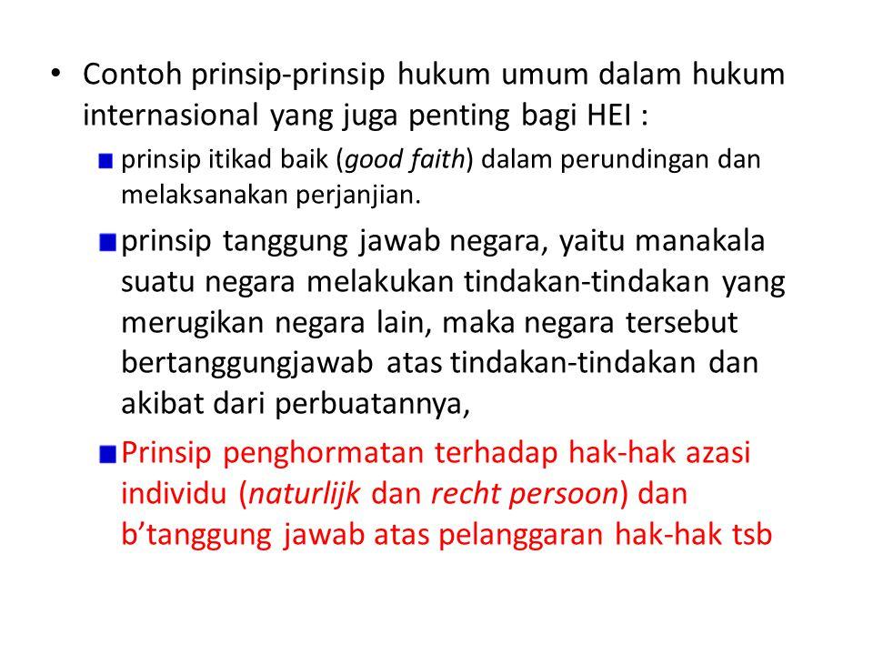 Contoh prinsip-prinsip hukum umum dalam hukum internasional yang juga penting bagi HEI :