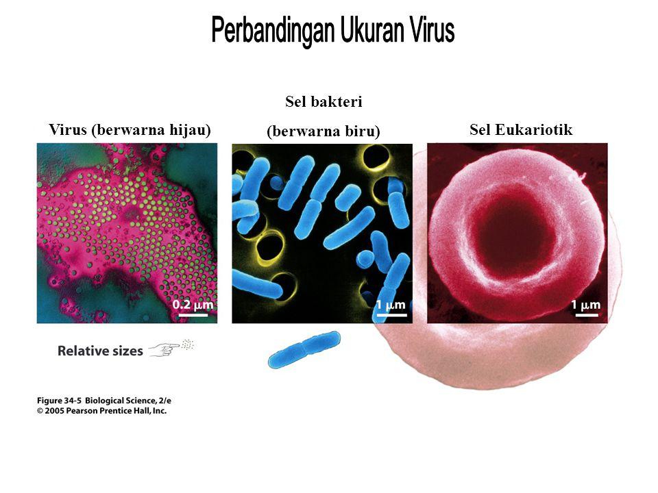 Virus (berwarna hijau)