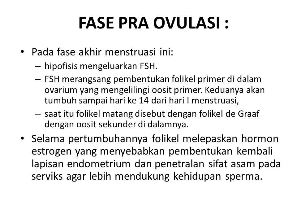FASE PRA OVULASI : Pada fase akhir menstruasi ini: