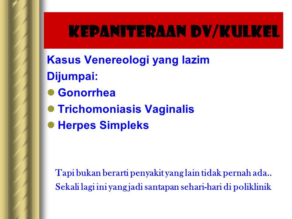 Kepaniteraan DV/Kulkel