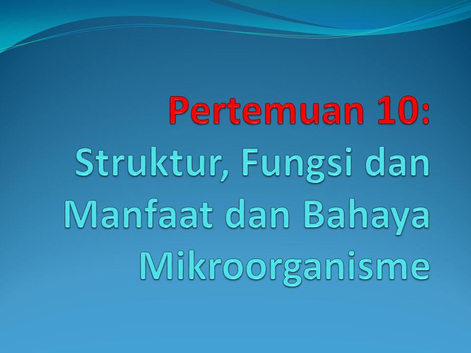 Pertemuan 10: Struktur, Fungsi dan Manfaat dan Bahaya Mikroorganisme