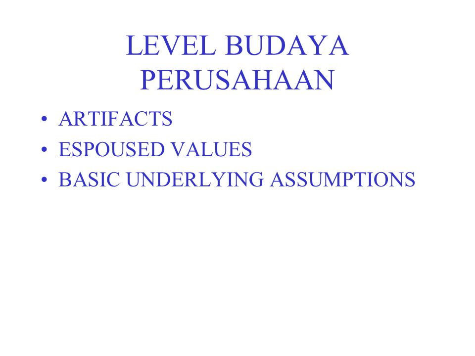 LEVEL BUDAYA PERUSAHAAN