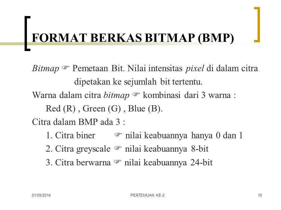FORMAT BERKAS BITMAP (BMP)