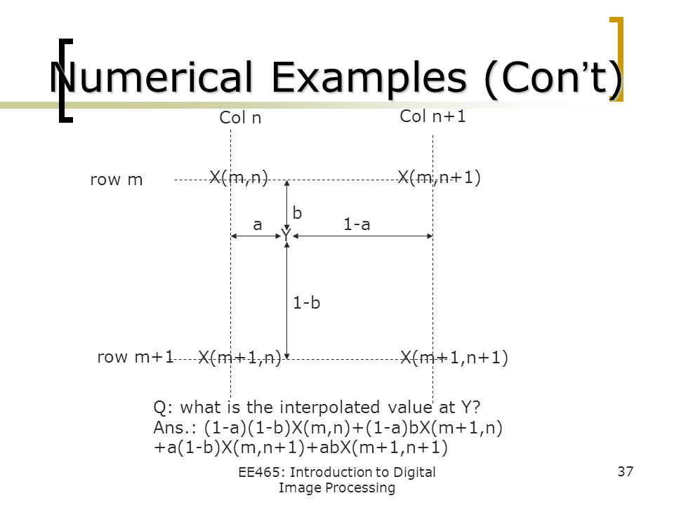 Numerical Examples (Con't)