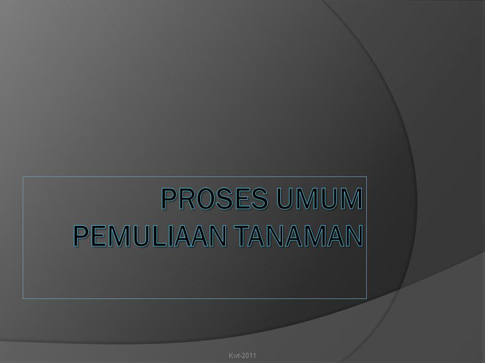 PROSES UMUM PEMULIAAN TANAMAN