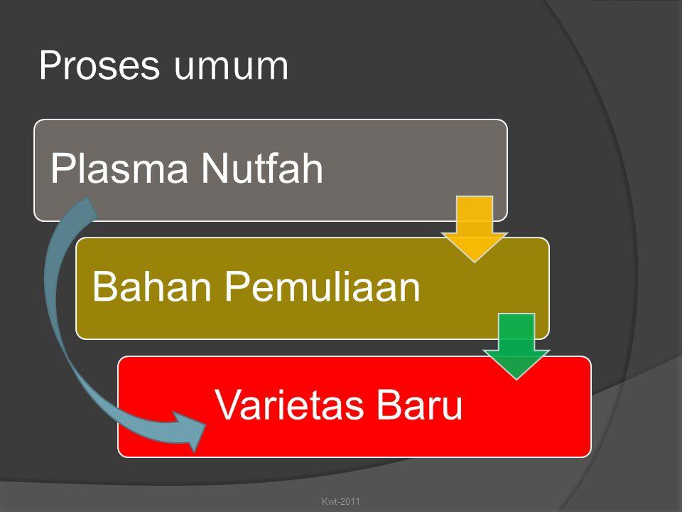 Proses umum Plasma Nutfah Bahan Pemuliaan Varietas Baru Kwt-2011