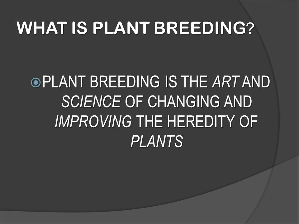 WHAT IS PLANT BREEDING.