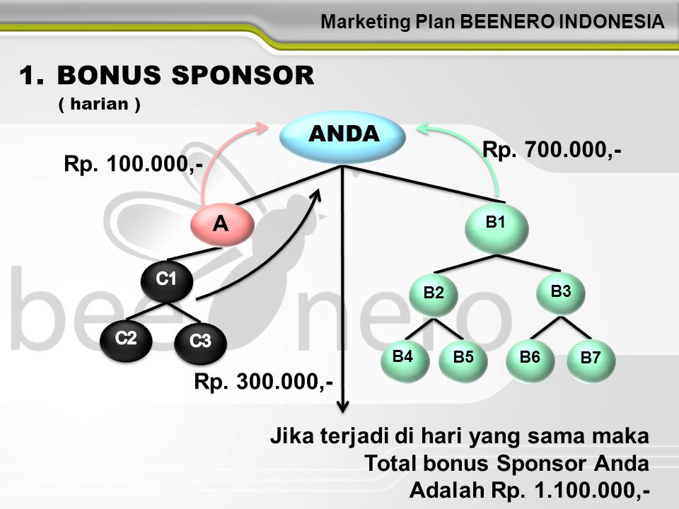 Marketing Plan BEENERO INDONESIA