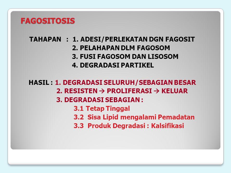 FAGOSITOSIS