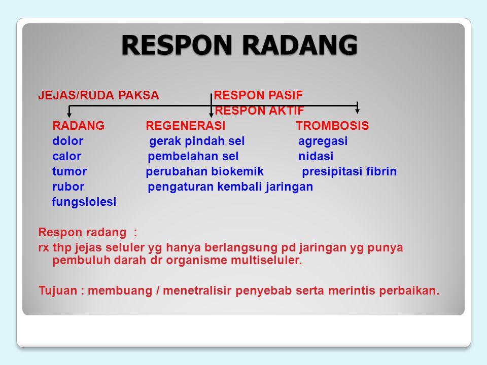 RESPON RADANG