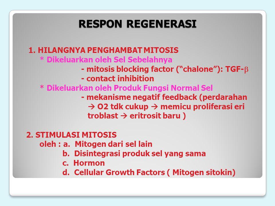 RESPON REGENERASI