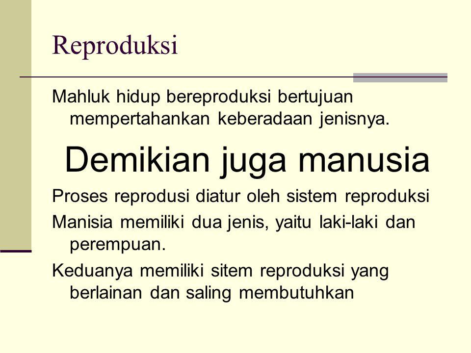 Demikian juga manusia Reproduksi