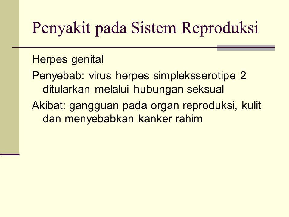 Penyakit pada Sistem Reproduksi