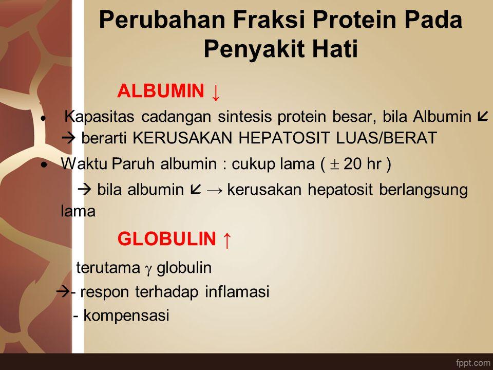 Perubahan Fraksi Protein Pada Penyakit Hati