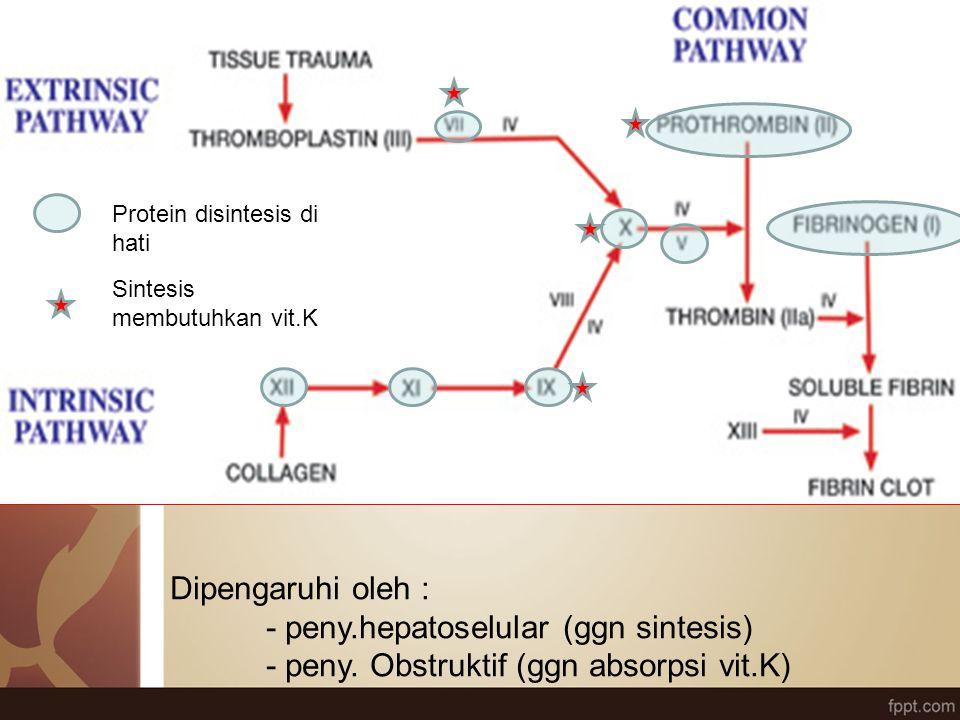 - peny.hepatoselular (ggn sintesis)