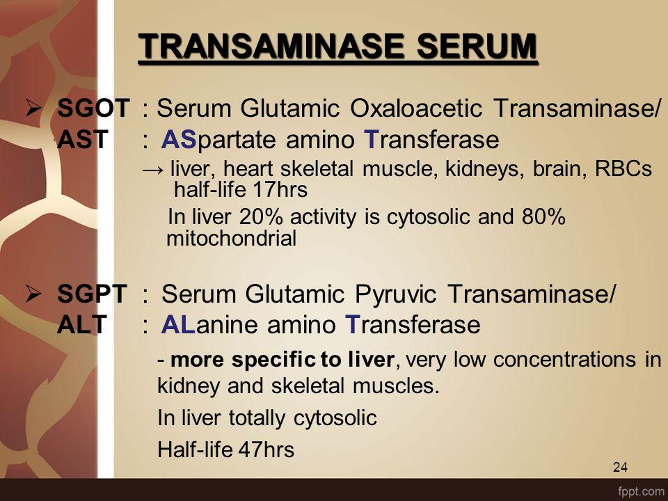 TRANSAMINASE SERUM SGOT : Serum Glutamic Oxaloacetic Transaminase/