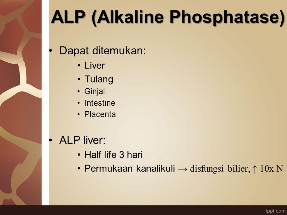 ALP (Alkaline Phosphatase)