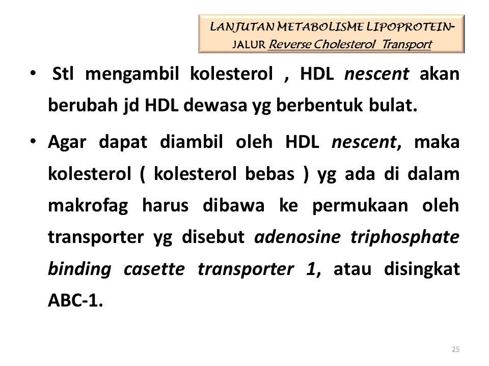 LANJUTAN METABOLISME LIPOPROTEIN-JALUR Reverse Cholesterol Transport