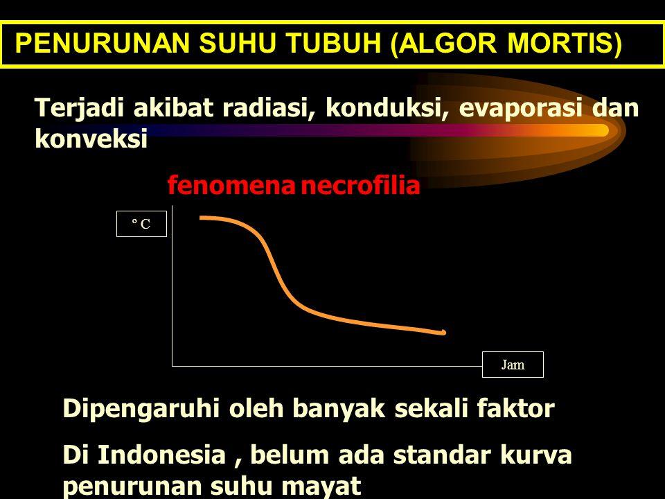 PENURUNAN SUHU TUBUH (ALGOR MORTIS)