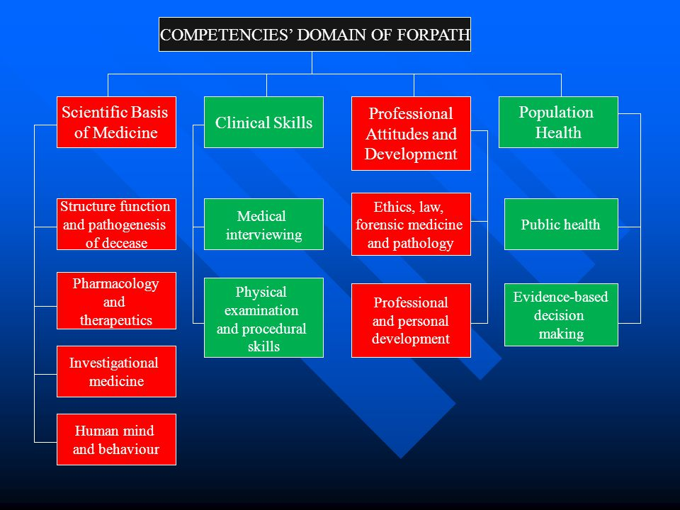 COMPETENCIES' DOMAIN OF FORPATH