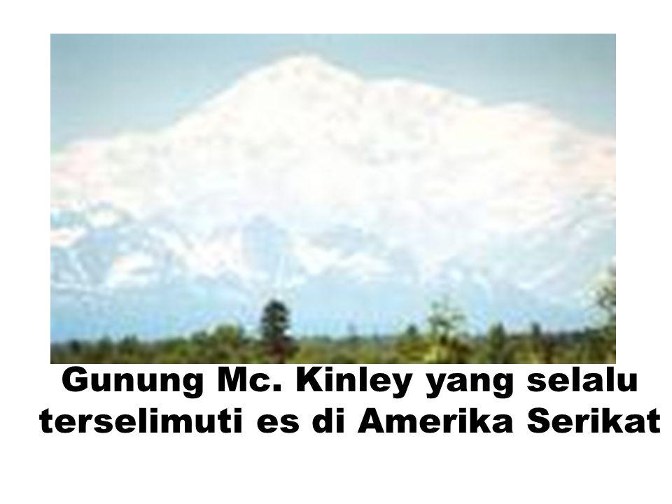 Gunung Mc. Kinley yang selalu terselimuti es di Amerika Serikat