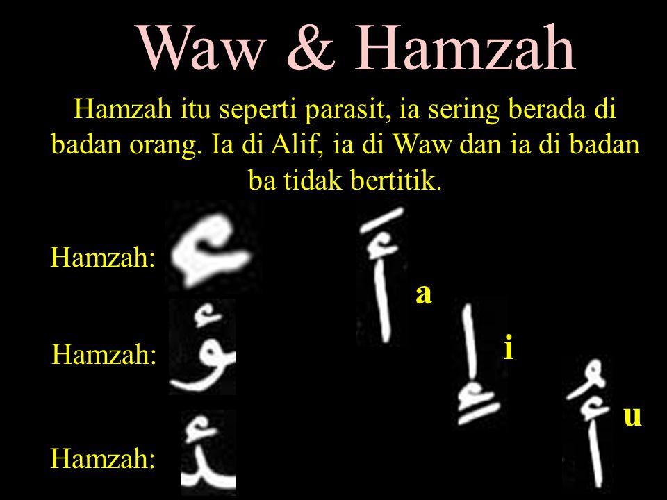 Waw & Hamzah Hamzah itu seperti parasit, ia sering berada di badan orang. Ia di Alif, ia di Waw dan ia di badan ba tidak bertitik.