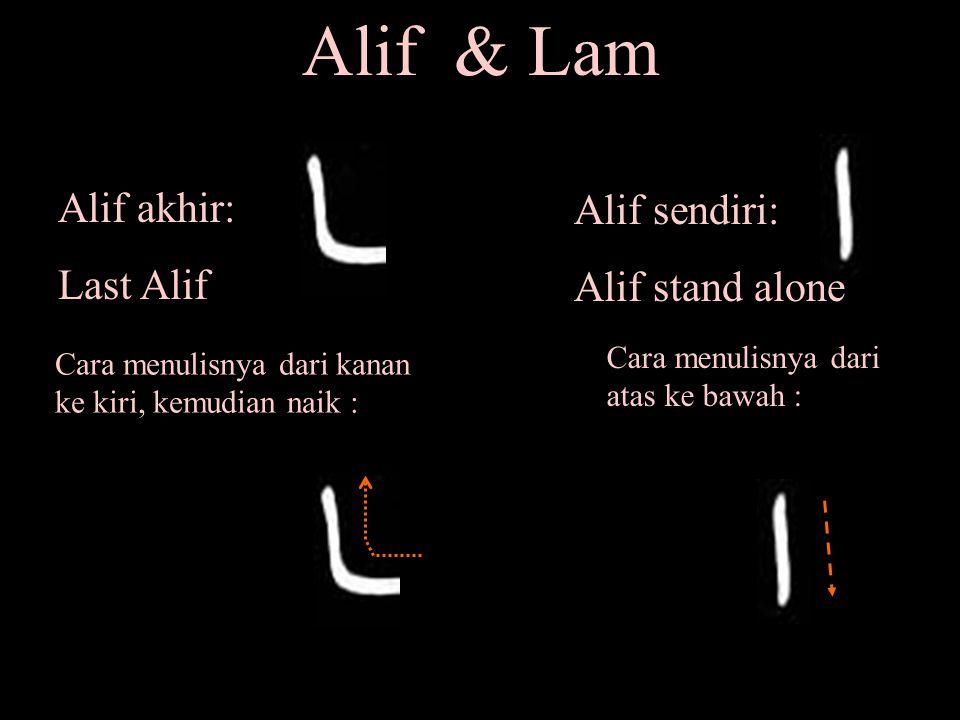 Alif & Lam Alif akhir: Alif sendiri: Last Alif Alif stand alone