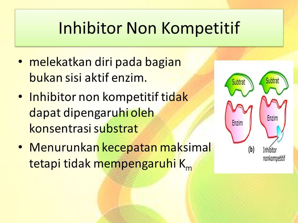 Inhibitor Non Kompetitif
