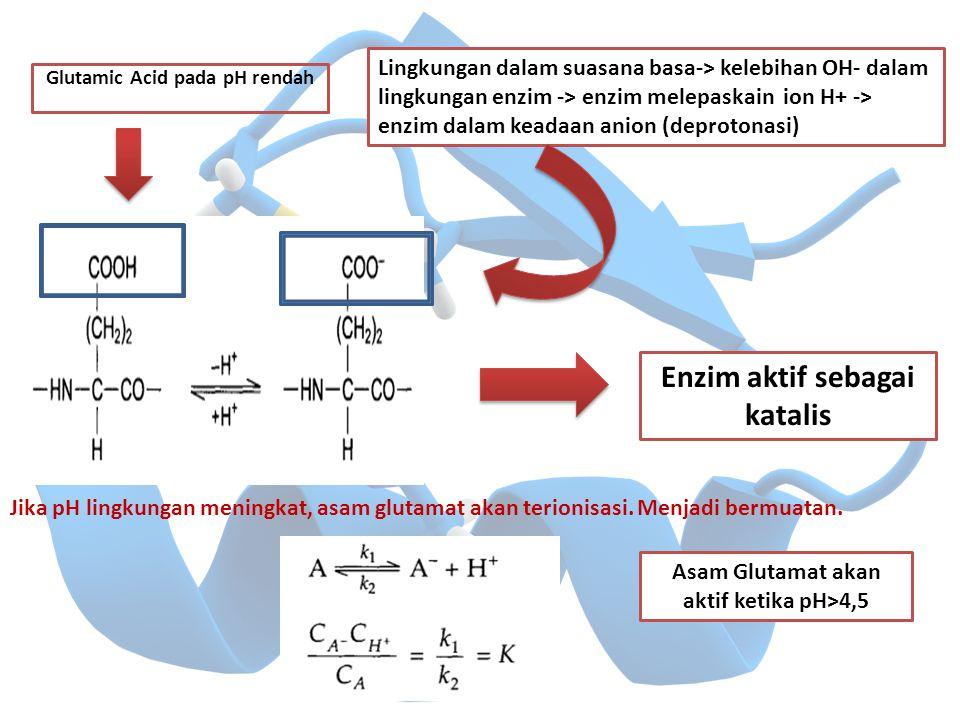 Enzim aktif sebagai katalis
