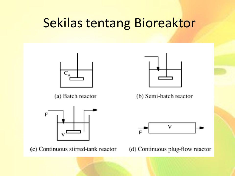 Sekilas tentang Bioreaktor