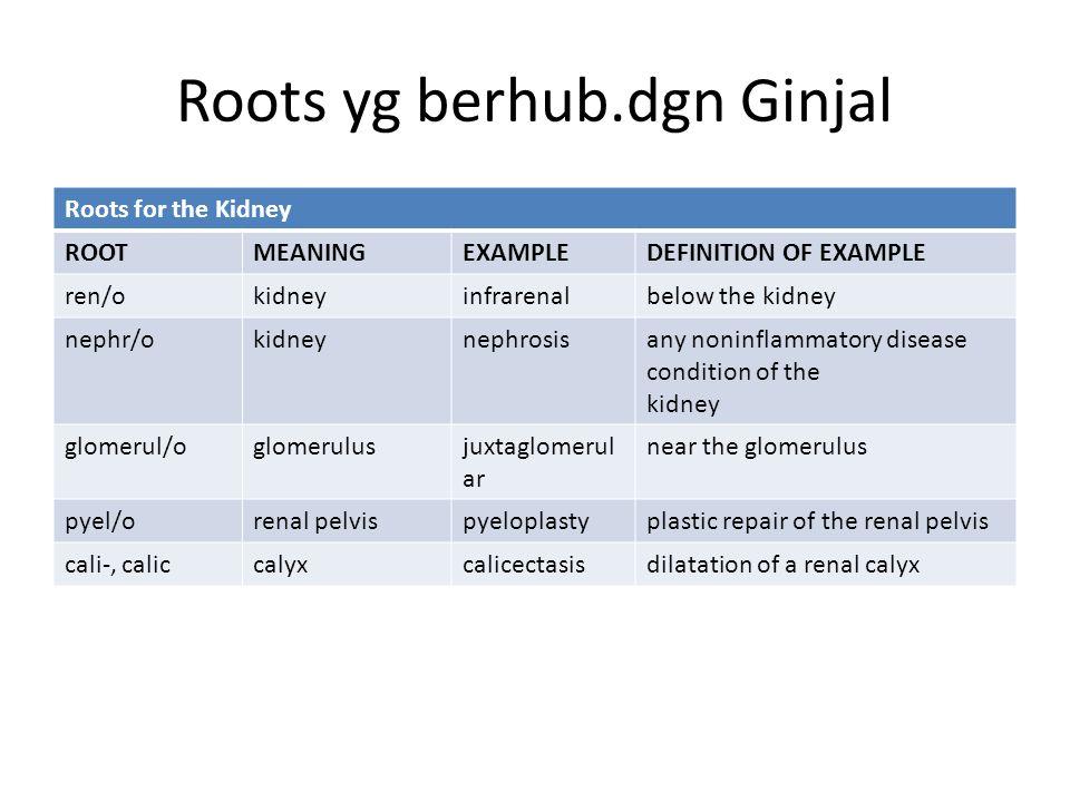 Roots yg berhub.dgn Ginjal