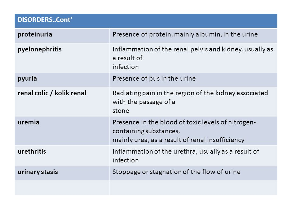 DISORDERS..Cont' proteinuria. Presence of protein, mainly albumin, in the urine. pyelonephritis.